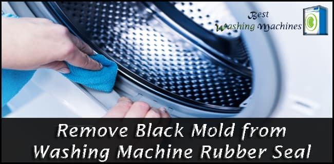 Remove Black Mold from Washing Machine Rubber Seal